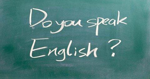 Учите английский  язык у профессионалов!