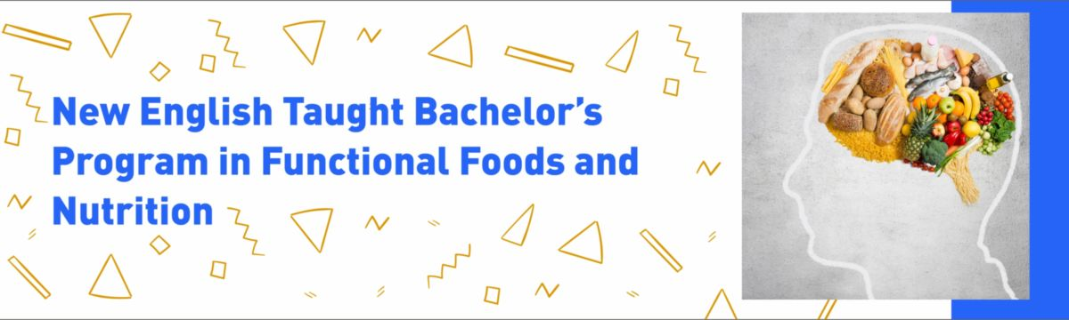 Bachelor Food