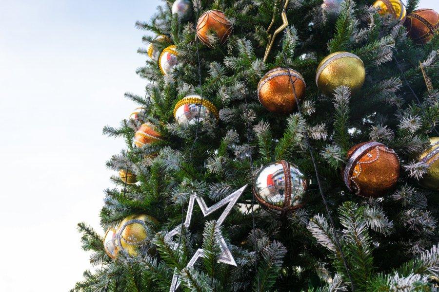 Ассоциация иностранных студентов ЮУрГУ отпраздновала Новый год