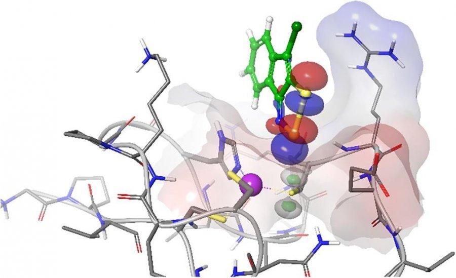 Российские ученые создают новые препараты для лечения СПИДа